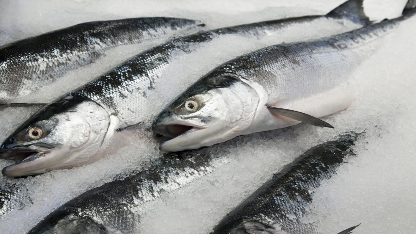 Can You Cook Whole Frozen Salmon?