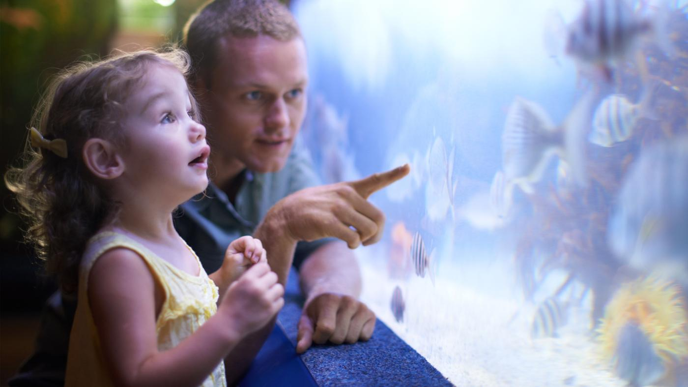 Where Can I Find Coupons to the Aquarium in Jenks, Okla.?