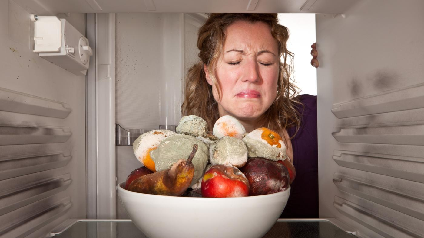 How Can You Get Rid of a Mold Smell?