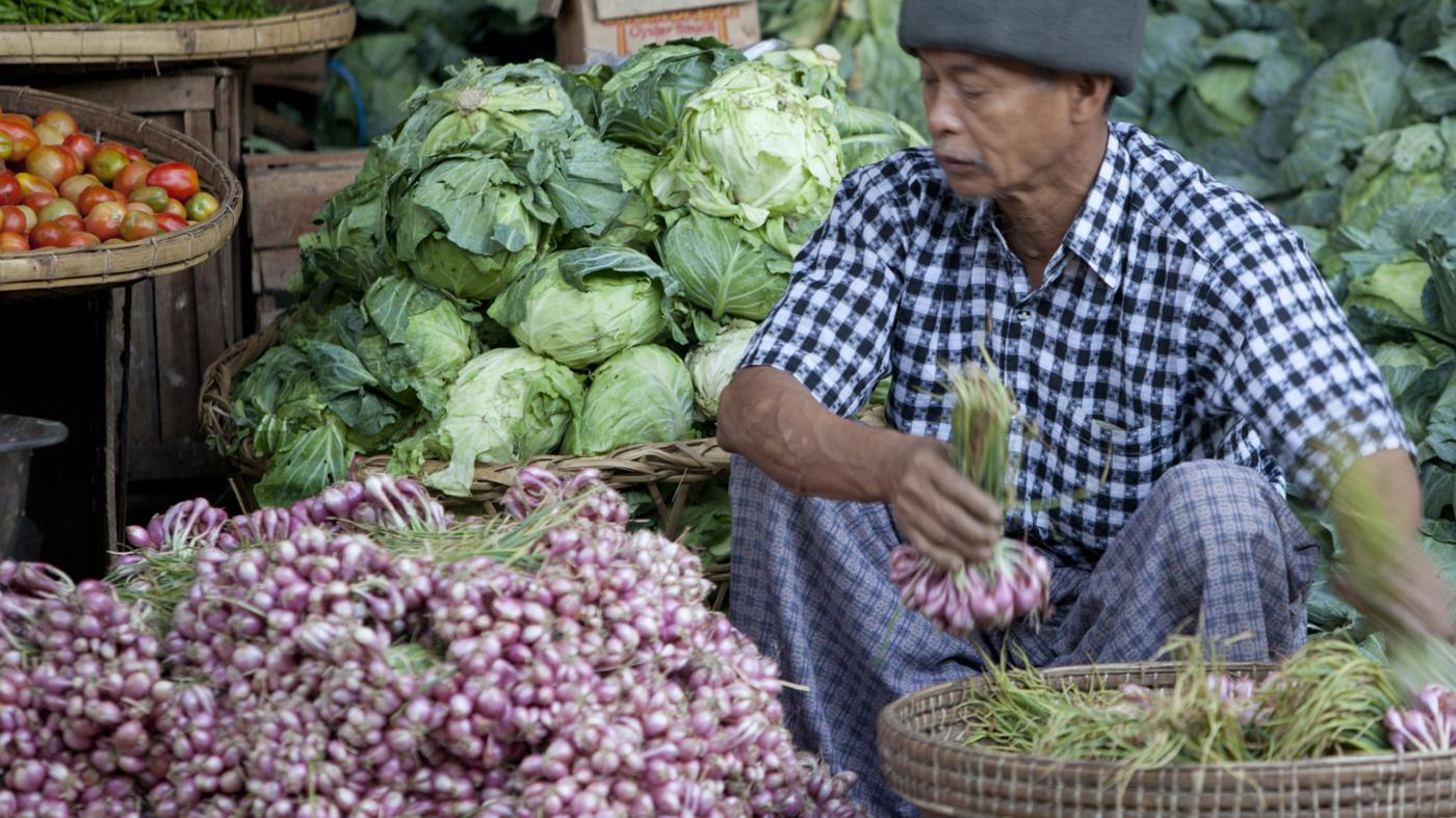 What Are Characteristics of a Traditional Economy?