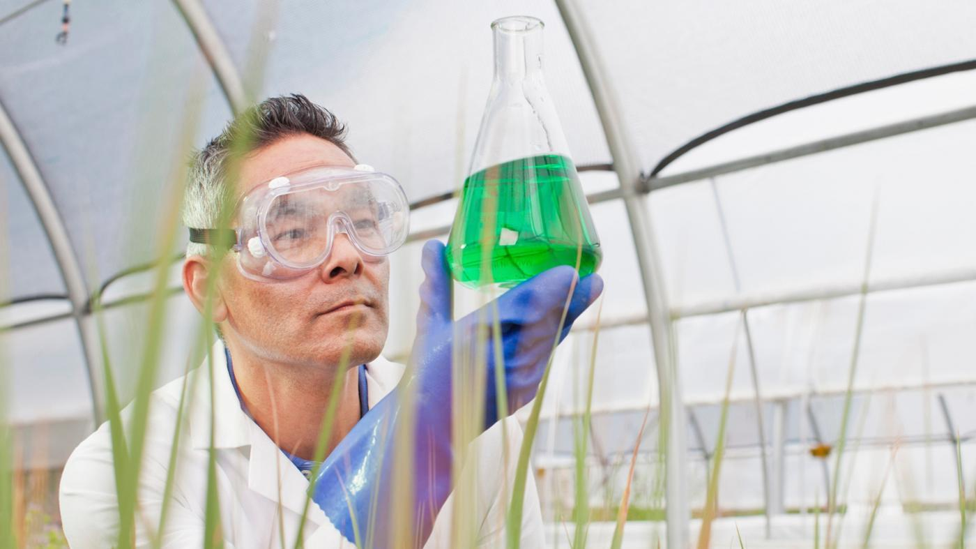 How Does Chemistry Relate to Biology?