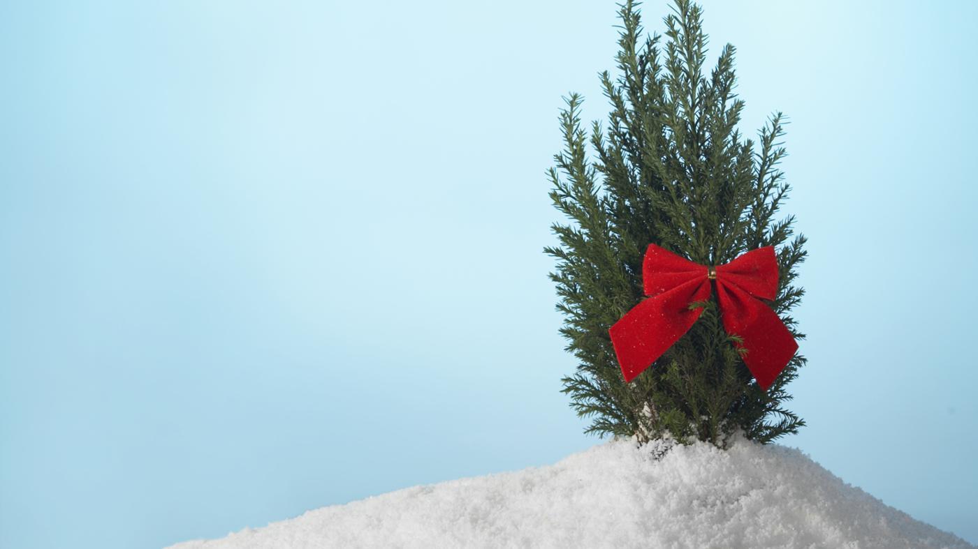 How Do You Hang Christmas Tree Ribbon?