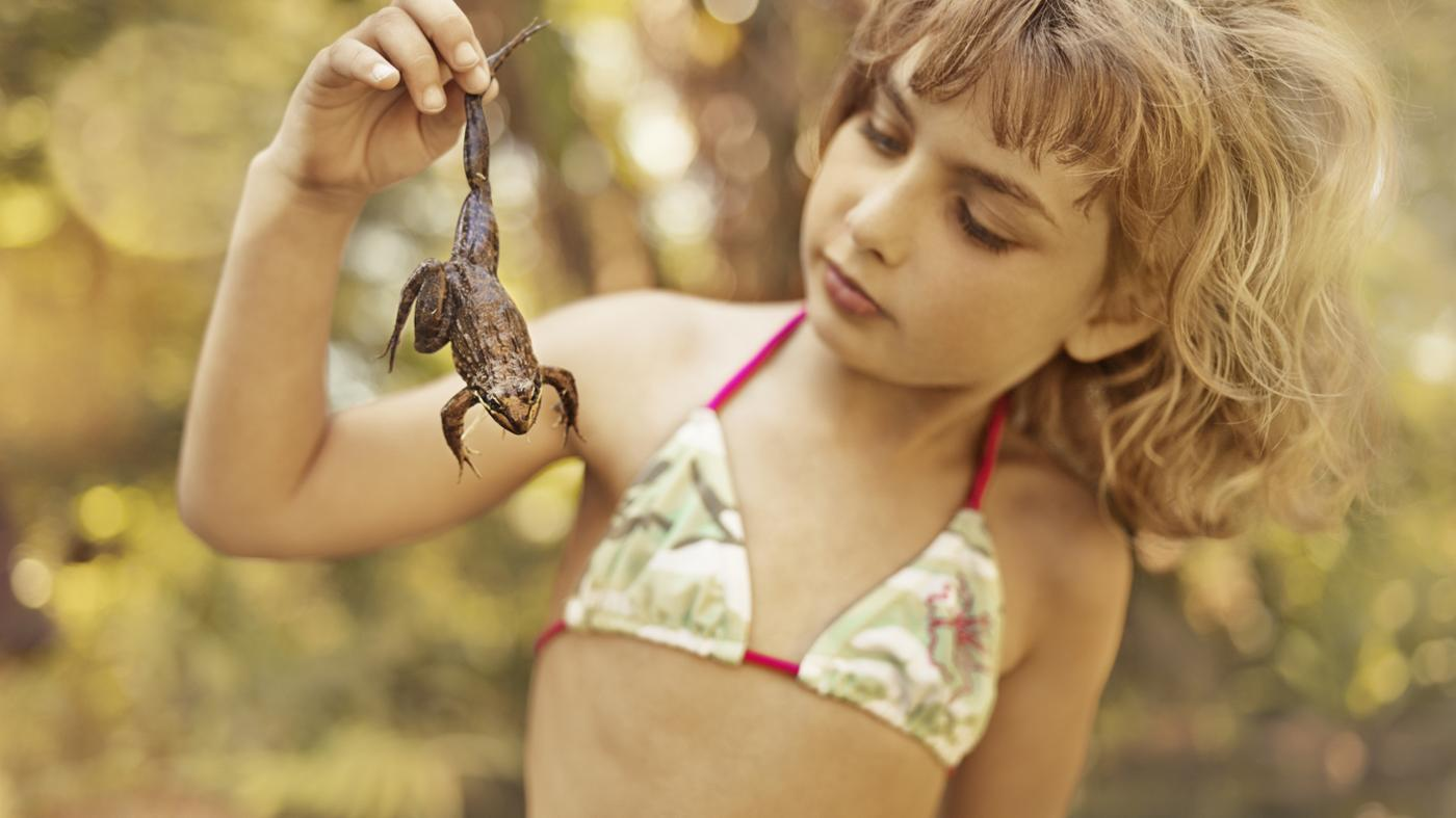 How Does One Tell If a Frog Is a Boy or Girl?