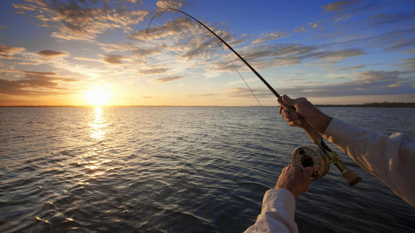 How Do You Fly Fish for Bonito?