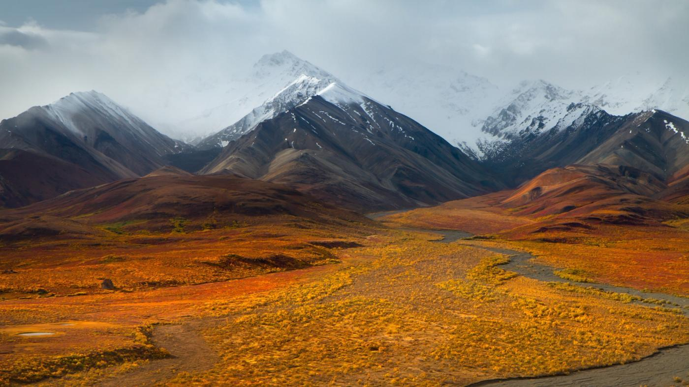 What Is the Human Impact on the Tundra?