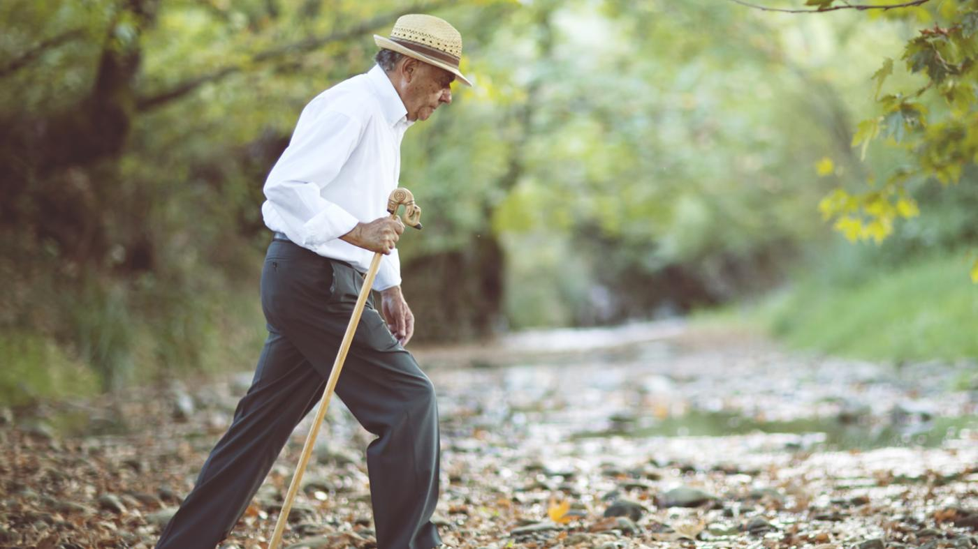 Why Does Life Expectancy Matter to Insurance Companies?
