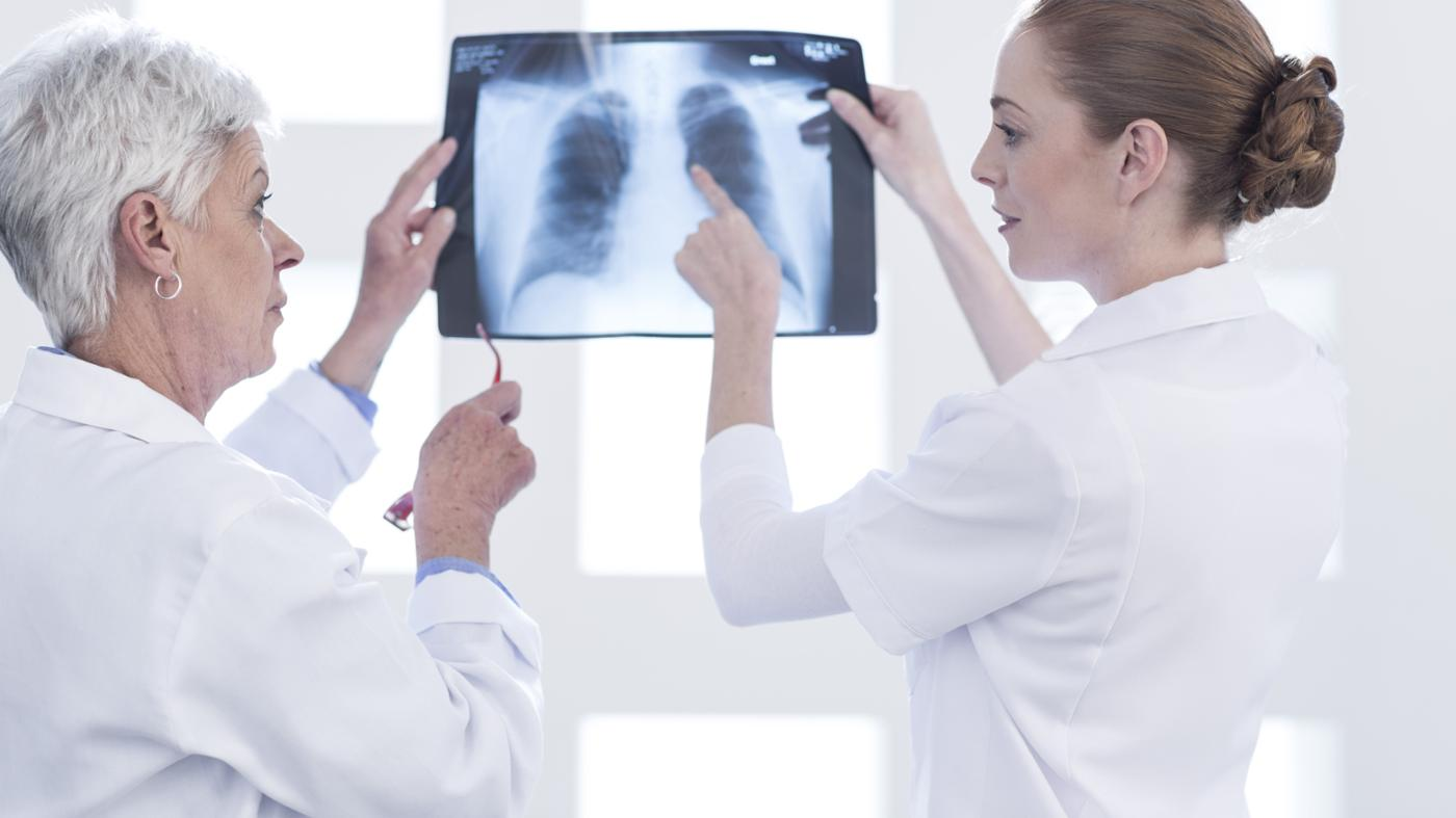 What Do the Lungs Do in the Respiratory System?