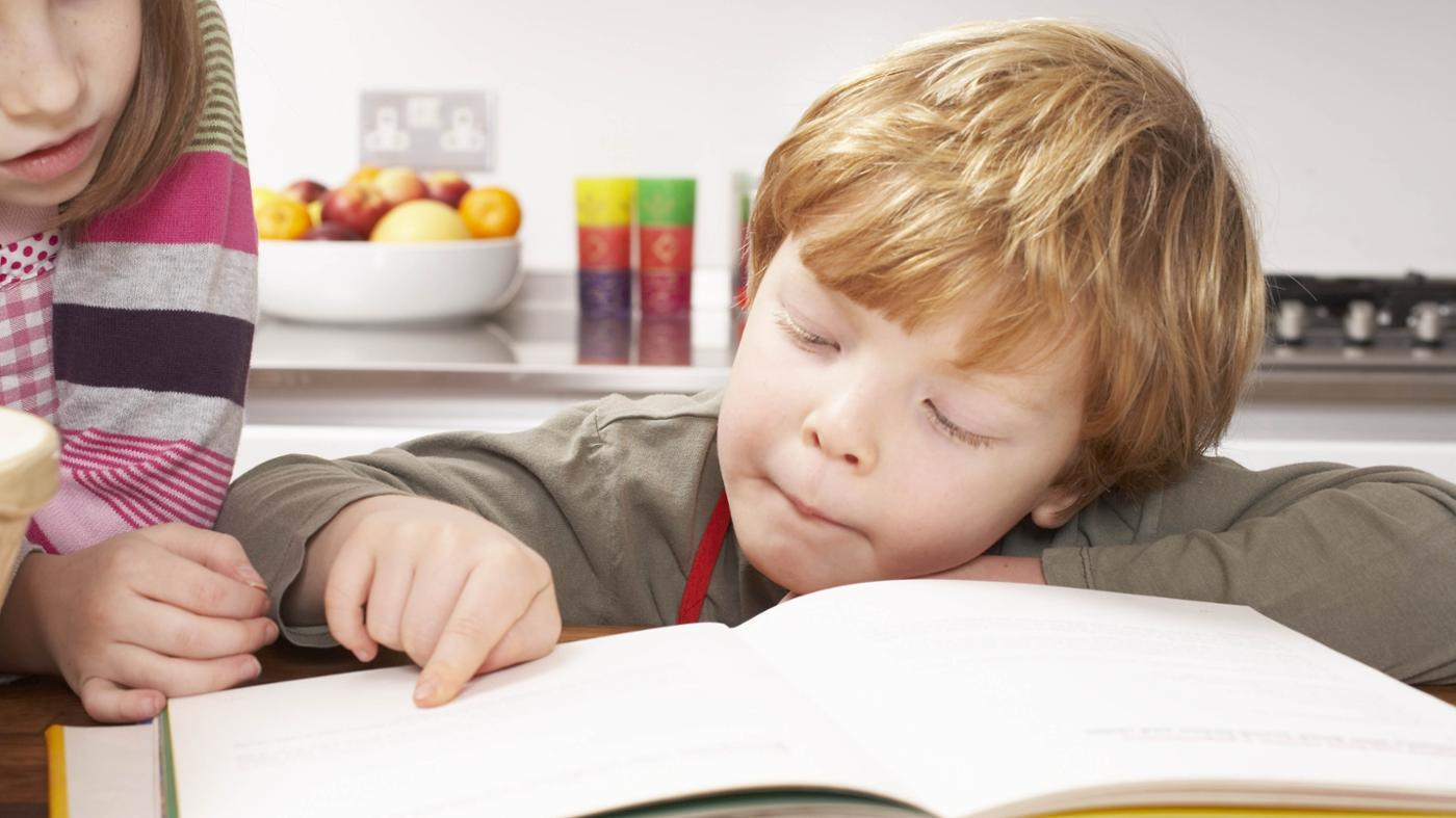 What Are the Main Ingredients of Literature?