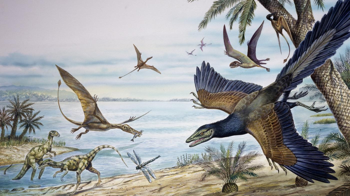 What Major Events Happened During the Jurassic Period?