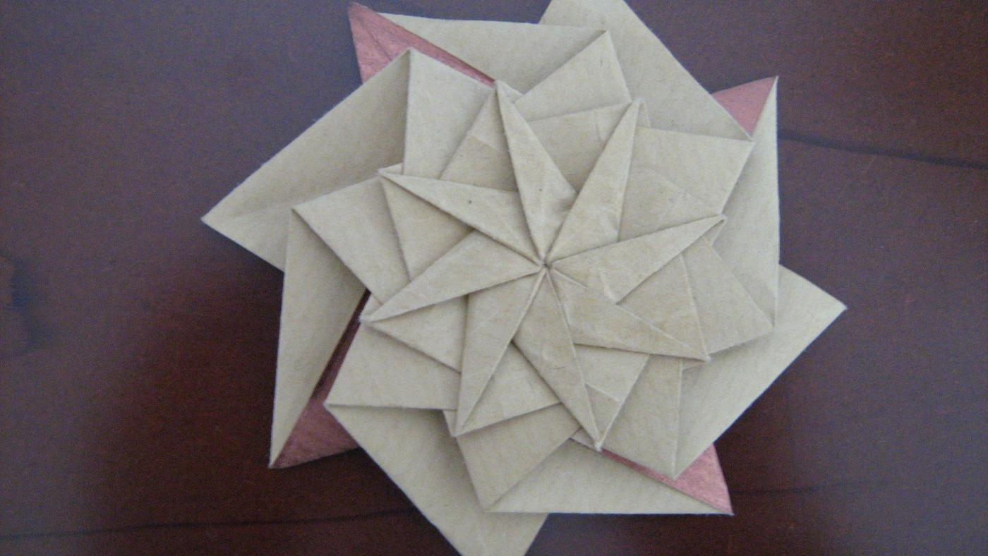 How Many Lines of Symmetry Does a Decagon Have?