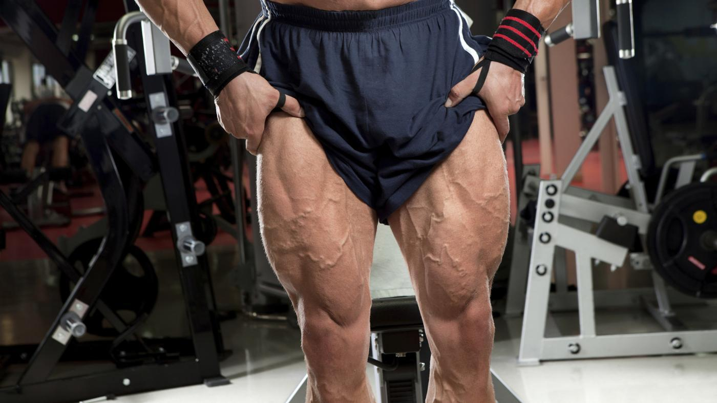 What Are the Names of the Muscles in the Thigh?