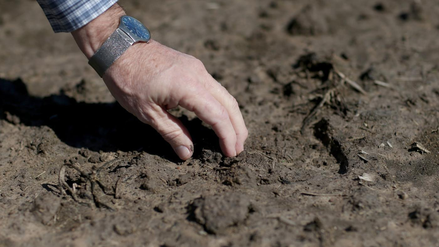 Why Do We Need Soil?