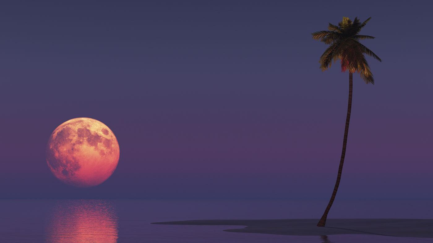When Is the Next Red Moon?