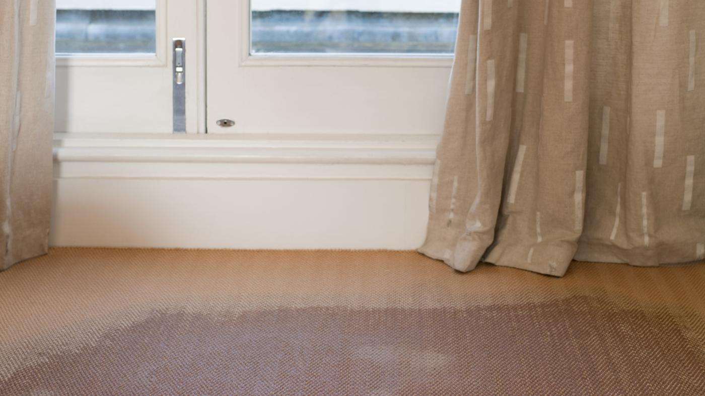 How Do You Remove the Mildew Smell From Carpet?