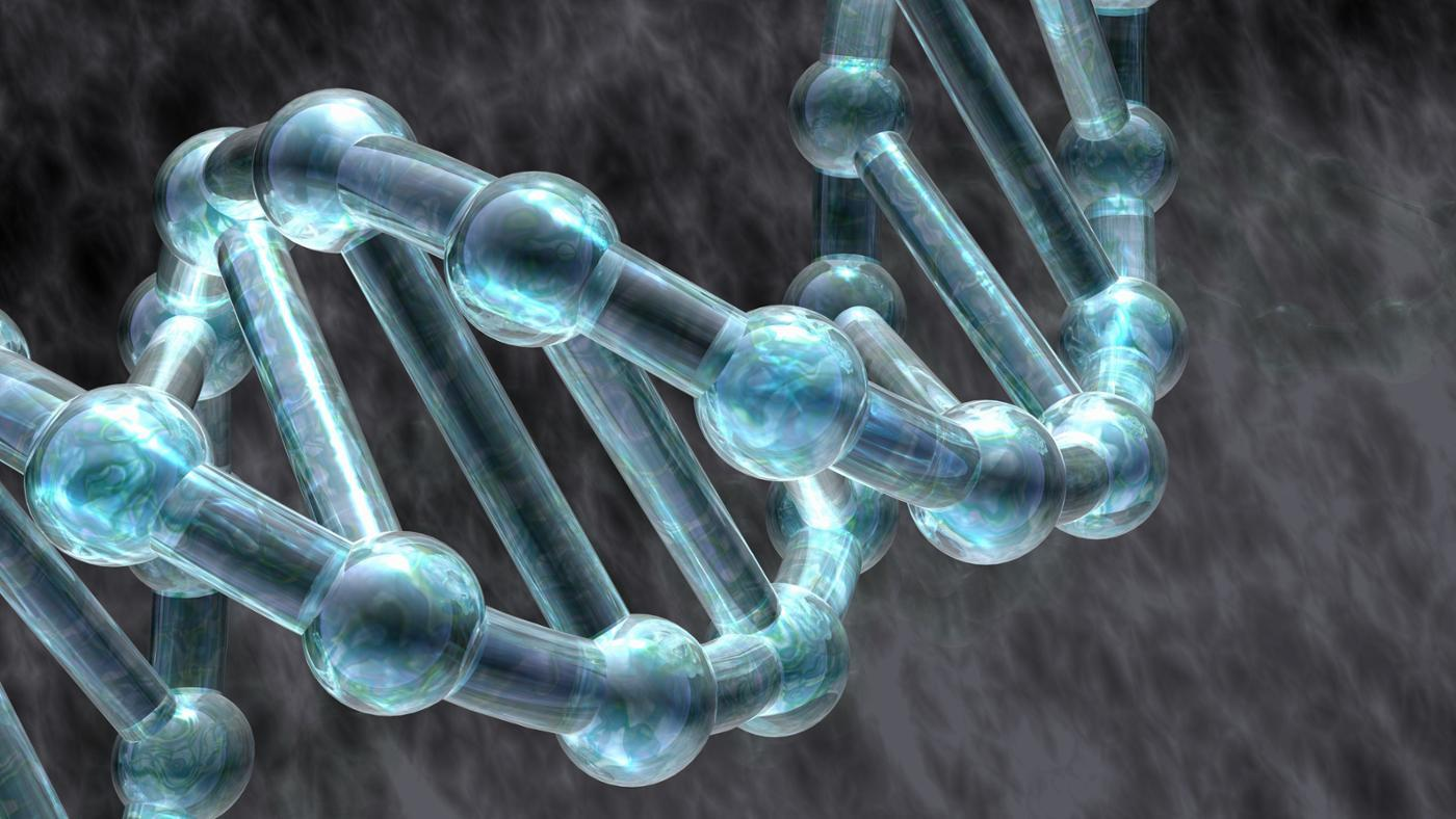 What Roles Do Proteins Play in DNA Replication?