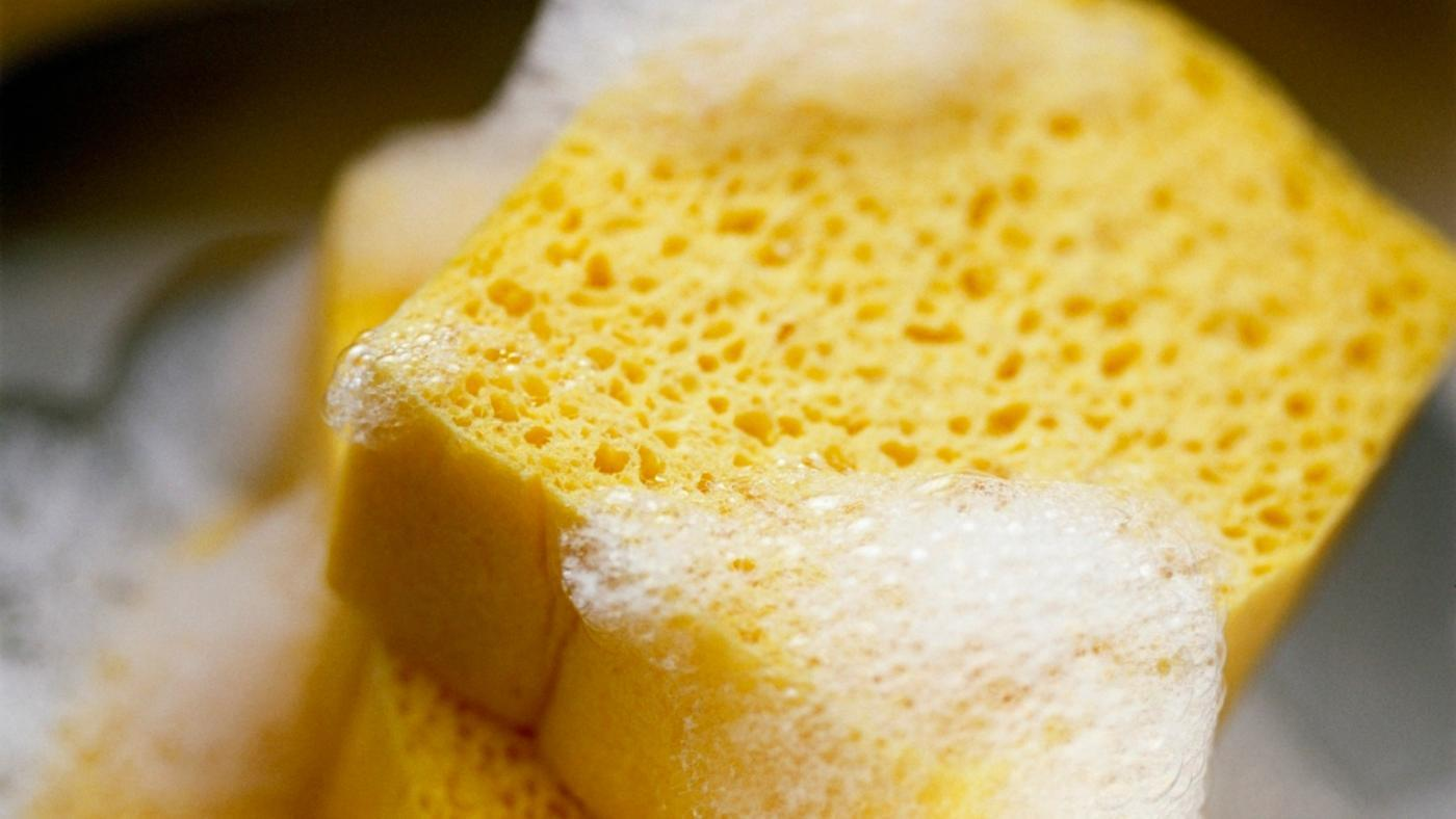 How Are Sponges Made?