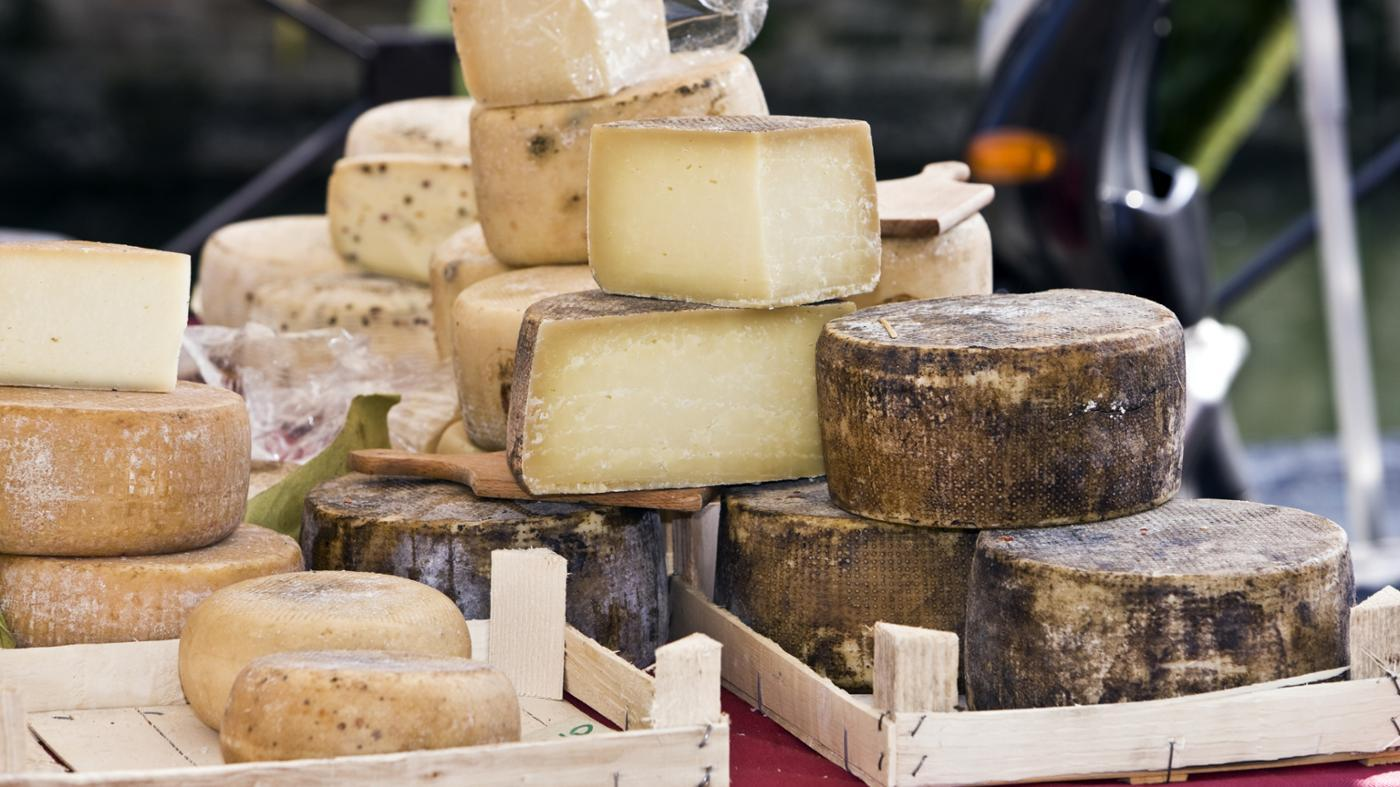 What Are Some Substitutes for Fontina Cheese in a Recipe?