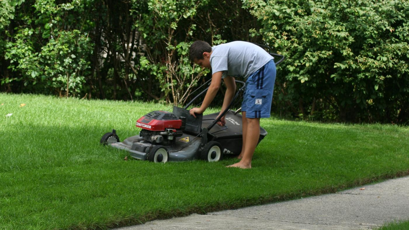 What Is Wrong With My Lawnmower?