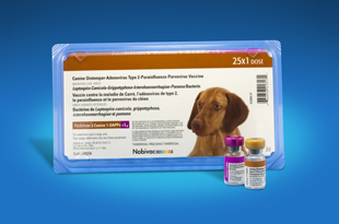 leptospirosis vaccine for pets