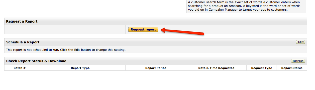 Seller Central Amazon Advertising Campaign Auto Search Terms