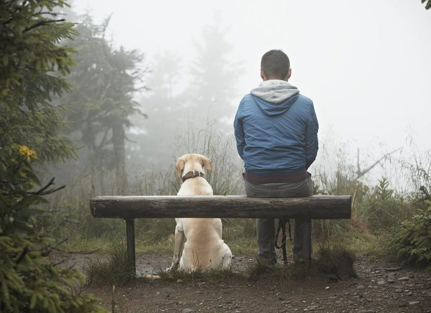 5 Ways To Know That Your Pet Dog Know Your Sadness