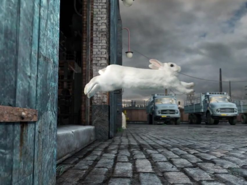8 Reasons A Rabbit Run Away From Home