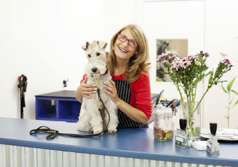 5 Promising Benefits of Being A Dog Groomer