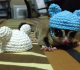 4 Safe and Fun Accessories for Sugar Glider