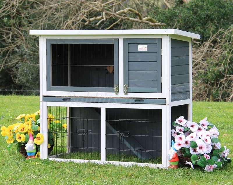 4 Things that Should be Considered when You make DIY Rabbit Hutch