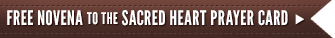 Sacred Heart Novena Banner