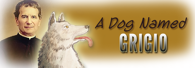 Header-A Dog named Grigio