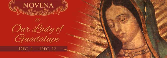 Header-Novena to Our Lady of Guadalupe