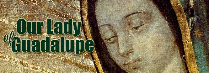 Header-Our Lady of Guadalupe