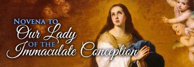 Header-Novena to Our Lady of the Immaculate Conception