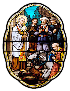 Stained glass of the mule kneeling before Saint Anthony holding the Holy Eucharist
