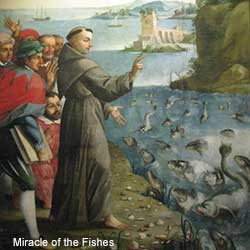 Miracle of Saint Anthony preaching to the fishes and the fishes lifting their heads out of the water to listen