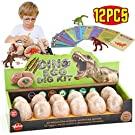 Dinosaur Eggs Dig Kit