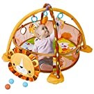 Baby Play Mat - 3 in 1 Baby Play Gym with Ball Pit