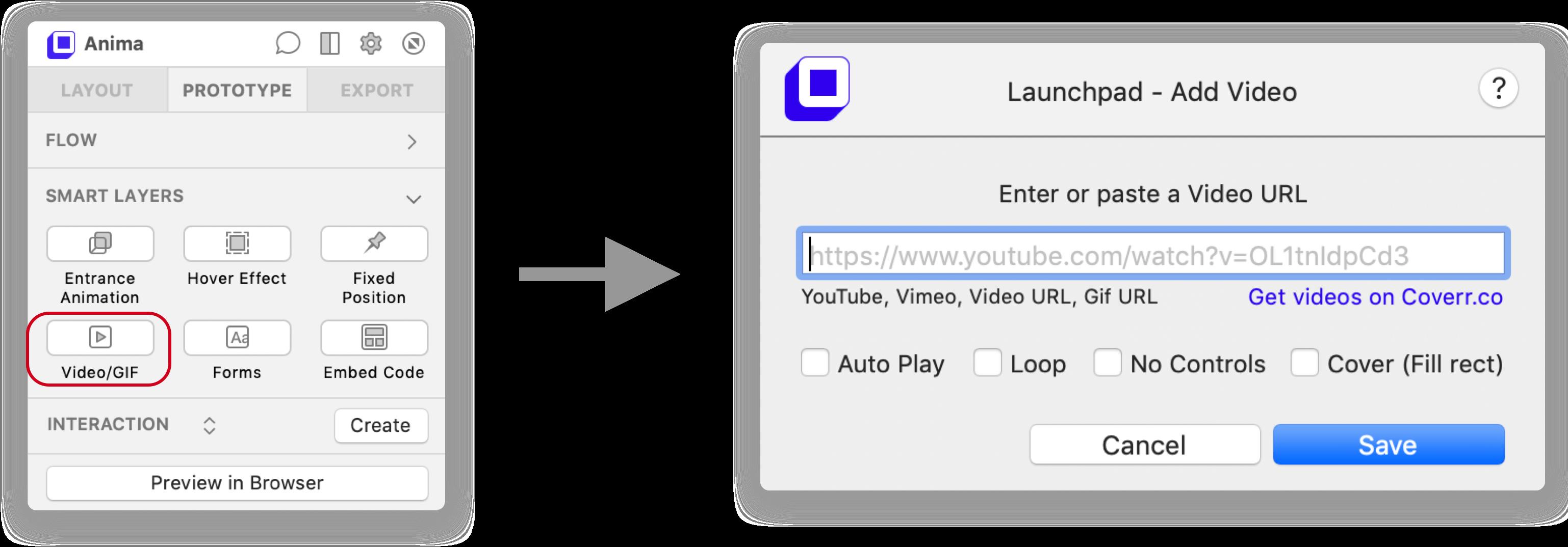 Video/GIF Interface