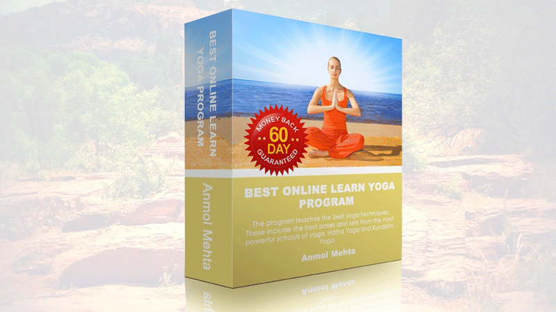 Learn Yoga Program
