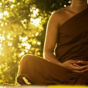 Yoga DVD Now Online