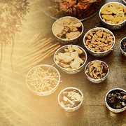 Introducing Ayurveda
