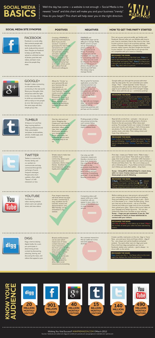 Social Media Basics Infographic