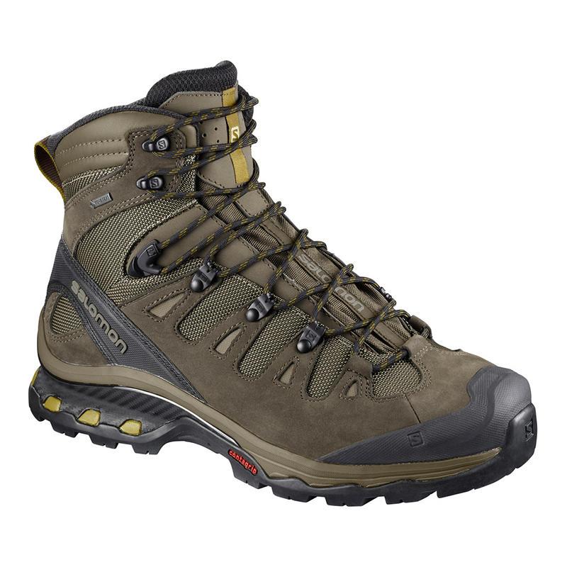 0162223e7 Salomon Men's Quest 4D 3 GTX Hiking Shoe