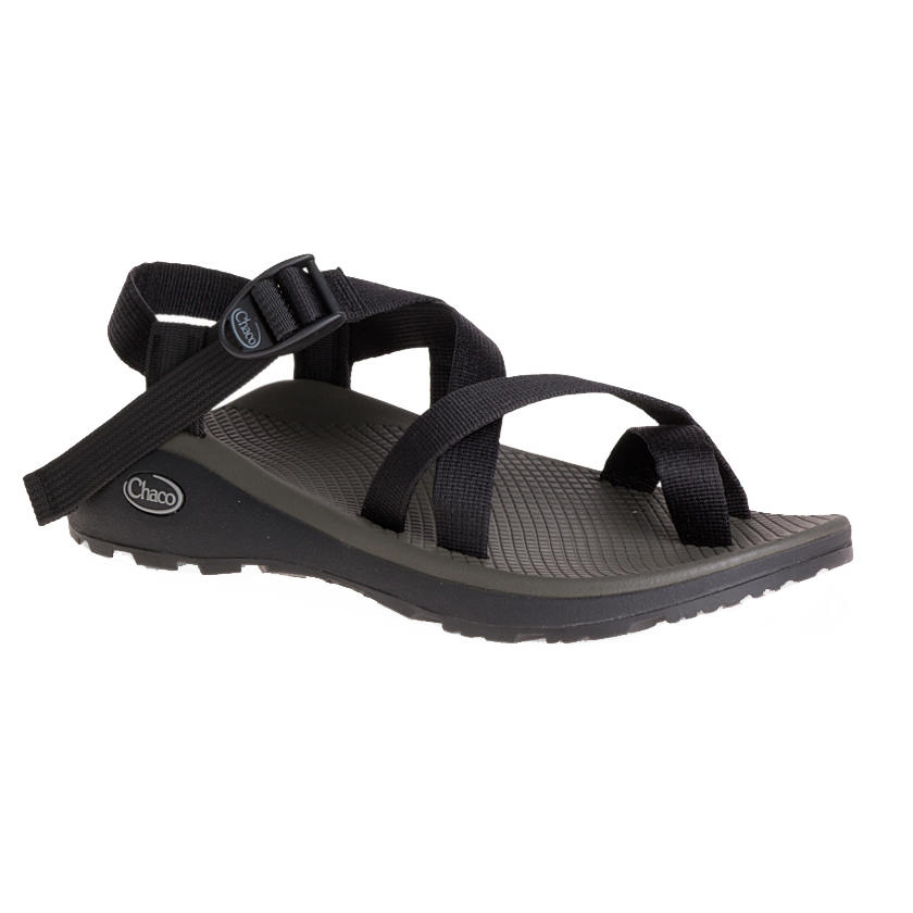 99f5b8249563 Chaco Men s Z Cloud 2 Sandals - Alabama Outdoors