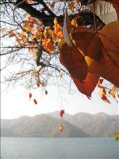 Lake Chuzenji : by 2008-2009, Views[263]