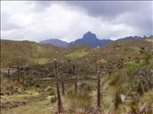 cajas national park : by 2008-2009, Views[160]