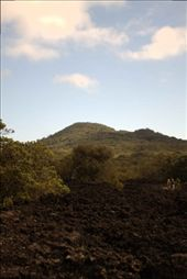 View of Rangitoto summit and lava fields.: by 2pter, Views[143]