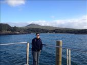 Rangitoto: by a_and_a, Views[102]
