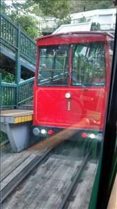 Cable car to Botanic Gardens: by a_and_a, Views[133]